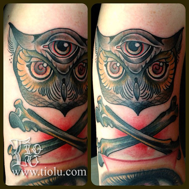 3rd eye owl with crossbones