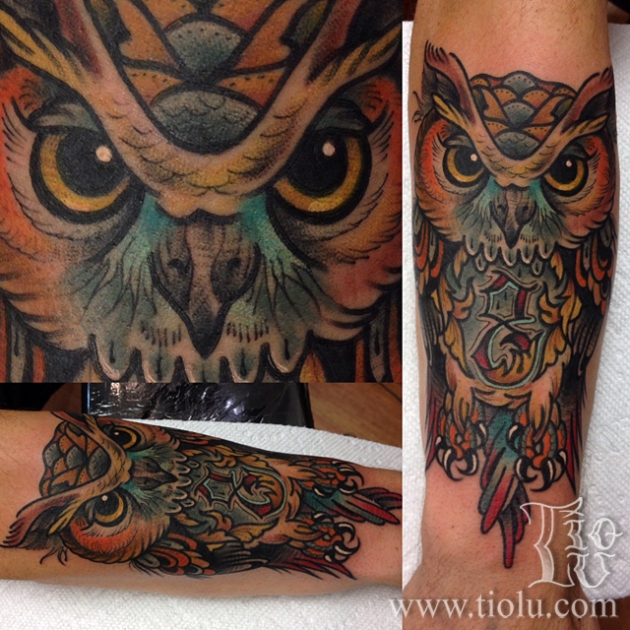 8 Owl