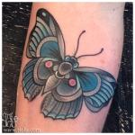 Turquoise moth