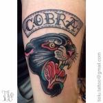 Marc's Cobra