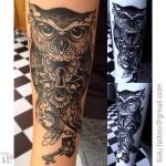 Lock key owl